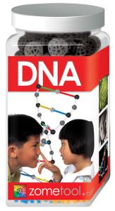 Zome_Jar_DNA